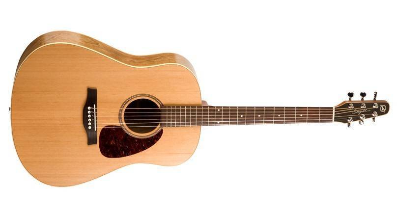 Best Acoustic Guitar For Beginners?