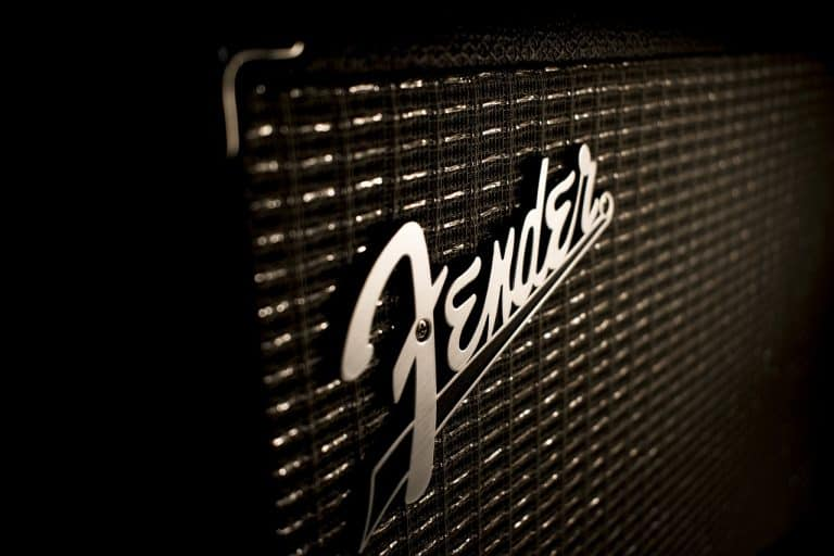 Best Acoustic Amps for Vocals – 5 Options To Consider