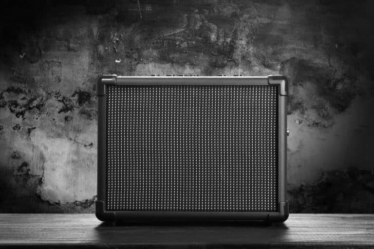 The 7 Best 1×12 Guitar Cabinet in 2021 w/ Review