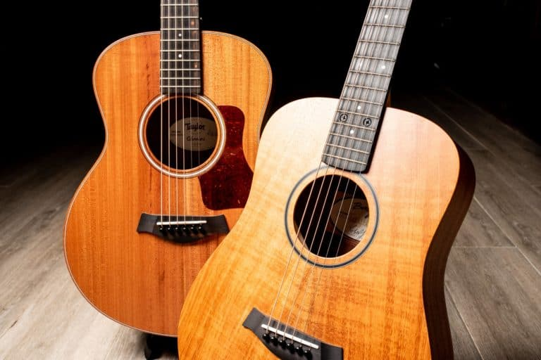 Taylor GS Mini VS the Baby Taylor : Which is better?