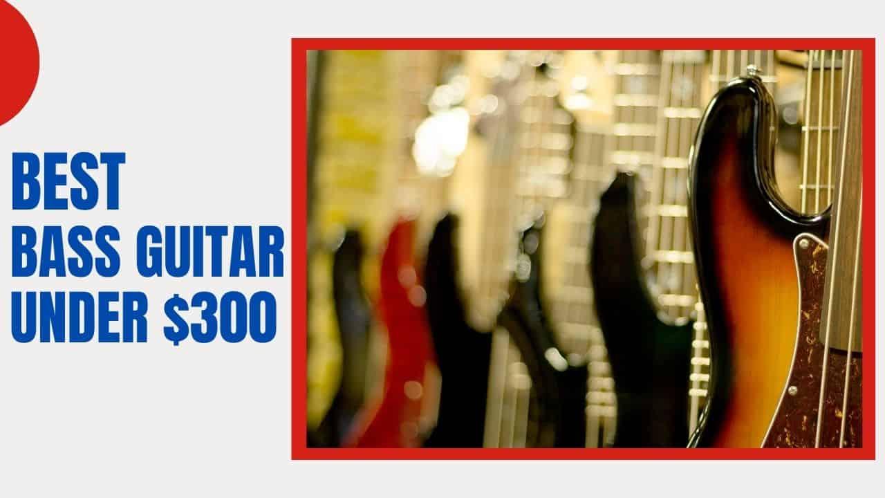 Best Bass Guitar Under $300